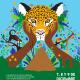 I festival  sërkë de juegos deportivos indígenas Territorio Cabécar de Talamanca